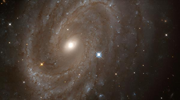 Distant Spiral Galaxy NGC 4603, Home to Variable Stars