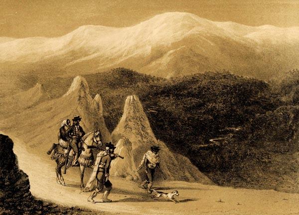 Chaparrales de Diezma (Camino de Guadix à Granada)