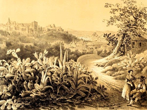 Vista de la Alhambra desde los Nopales del Monte Sacro