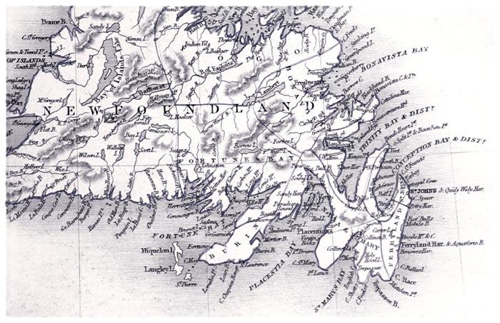 Newfoundland [Detail]