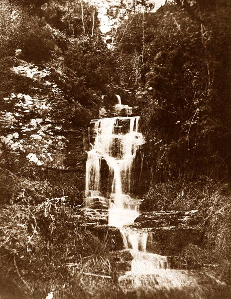 Forest Landscape with Waterfall