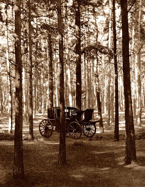 Carriage; Fir Woods, Copsham [Adaptation]
