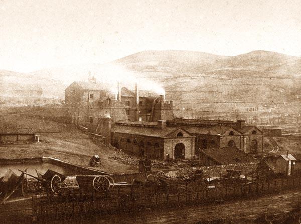 Factory, Terre-Noire