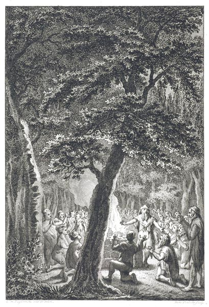 Worship in the Sacred Grove