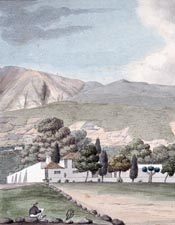 Doña Rosita - cover image